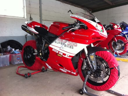 Red Dog Ducati 848