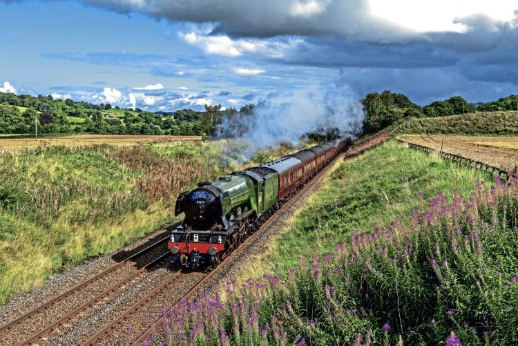 LNER A3 Pacific No. 60103 Flying Scotsman passes Moralee Bridge near Haydon Bridge in the Tyne Valley with the Railway Touring Company's 'Waverley' from York to Carlisle on September 4. HENRY ELLIOTT